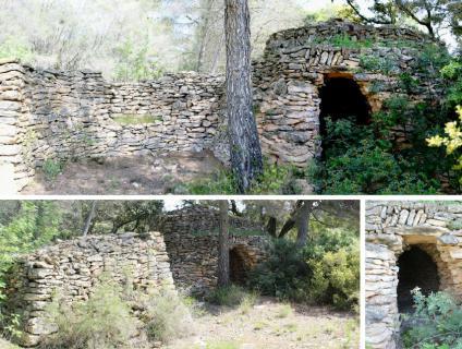 Barraca situada enmig del bosc