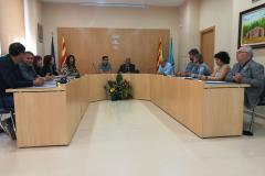 Plenari municipal